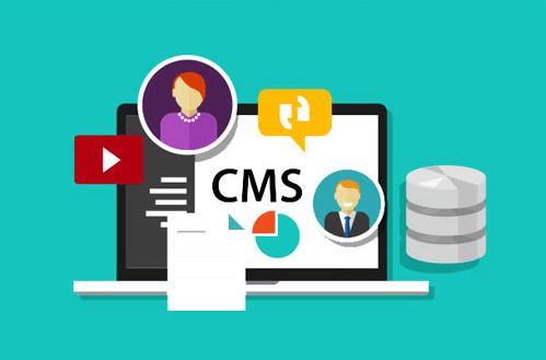 Sử dụng CMS để làm web.